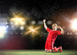 canvas print picture - Football goal