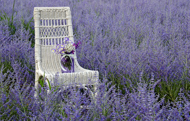 wicker chair with jar in Russian Sage