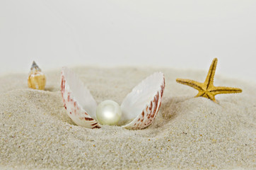 pearl in seashell in sand
