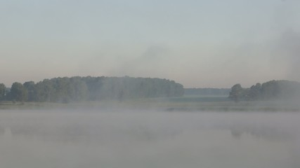 Summer morning landscape at the foggy lake