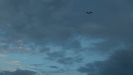 Plane flies against the backdrop of a cloudy evening sky