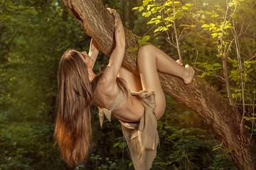 Girl climbs a tree.