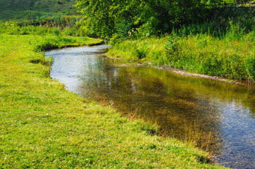 stream shallow river around green trees and grass