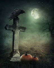 Crow on a grave
