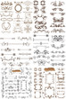Vector set of calligraphic elements for design. Calligraphic vec