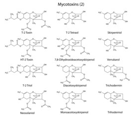 Structural chemical formulas of A-type mycotoxins