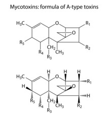 General structural chemical formulas of mycotoxins of A-type
