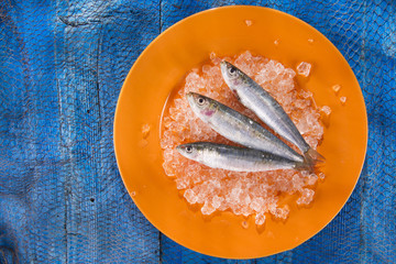 Fresh anchovies on a bed of ice