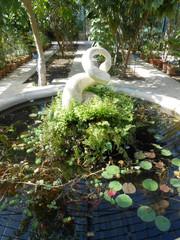 fontana e ninfee
