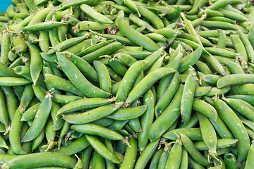 Close up of fresh sugar snap peas