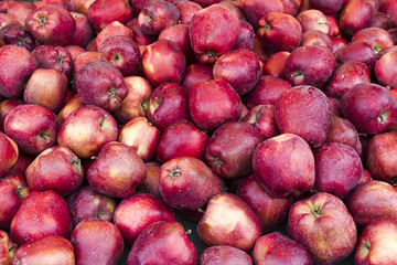 Many fresh red apple in a pile
