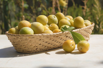 Basket of yellow plums