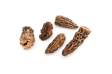 morels dried closeup
