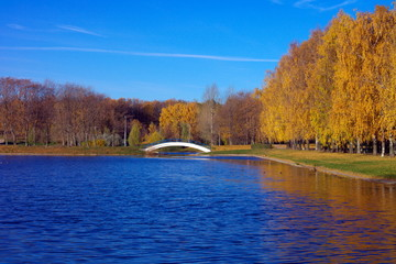 Autumn in City Park