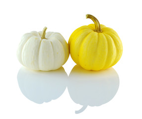 Pumpkin Fancy white yellow