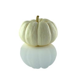 Pumpkin Fancy white White background