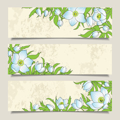 Horizontal banners with the anemones