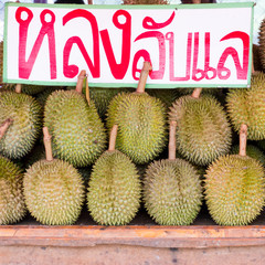 Long Lublae, kind of durian, tropical fruit in Thailand