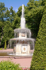 Fountain & tree in Peterhof