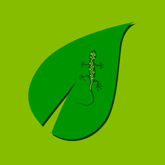 lizard on the leaf color vector illustration