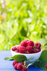 Bowl of raspberry on green background