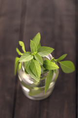 Lemon basil in glass jar closeup