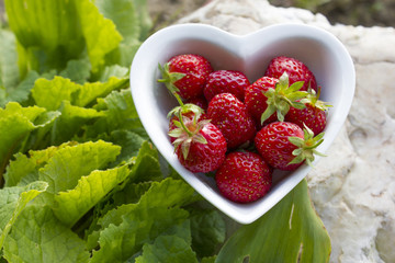 Strawberries in a bowl - shape heart in nature