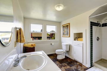 White bathroom with contrast brown tile floor