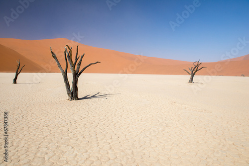 Dead Vlei en Namibie