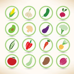 Vector icons collection of various vegetables