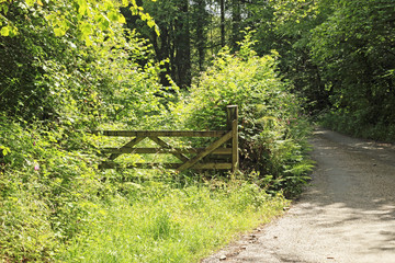 English Country farm Gate