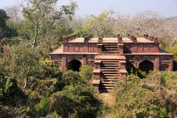 Old building surrounded by trees, Ranthambore Fort, India