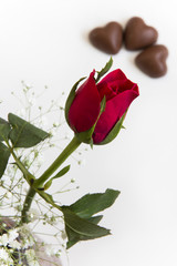Rose Bud and Heart Chocolates - Selective Focus