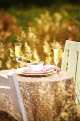 close up romantic dinner in nature