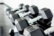 rows of dumbbells on a rack in a gym - 67859574