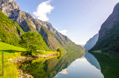 Fotobehang Canyon Nærøyfjord in Norway