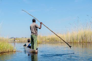 A u delta de l'Okavango au Botswana