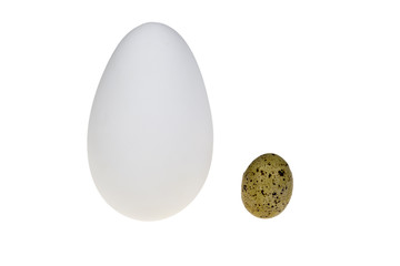 goose egg and a quail egg