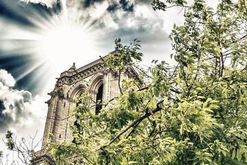 Details of Notre Dame