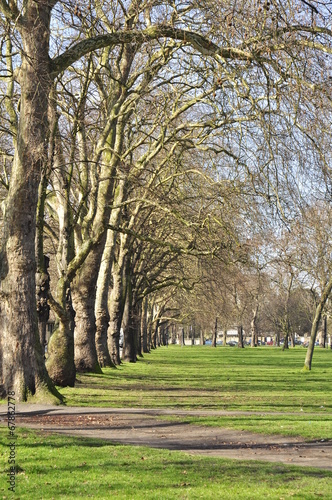 canvas print picture Clapham Common