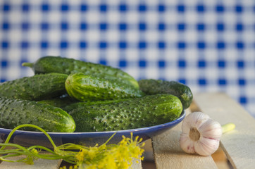 Cucumbers with pimples on the plate with tartan background