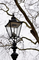 Street Lamp, Hyde Park, London