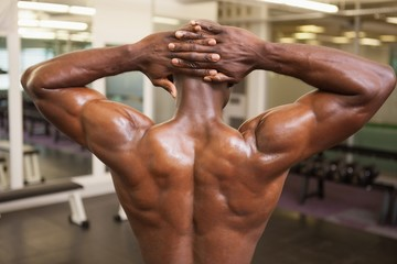 Rear view of a shirtless bodybuilder