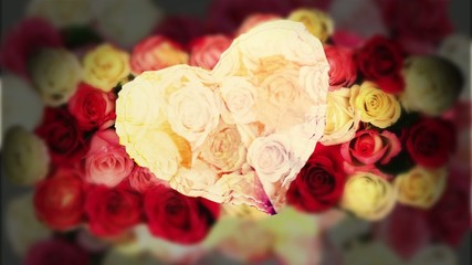 Cuore di rose Kylion