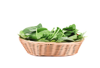 Close up of green spinach in basket.