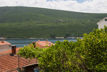 View Over Trees and Roofs on the Coastline