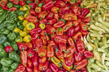 colorful organic peppers, natural background
