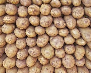 raw potatoes for sale closeup