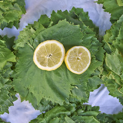 vine leaves and lemon slice, ingredients for dolmades