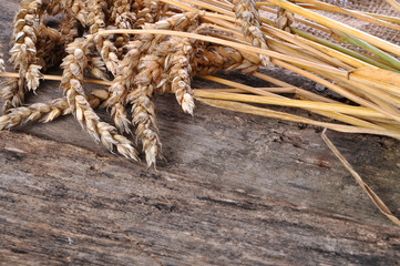 Wheat on the wooden table